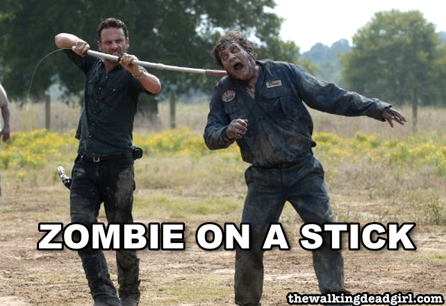 Zombie on a Stick - The Walking Dead